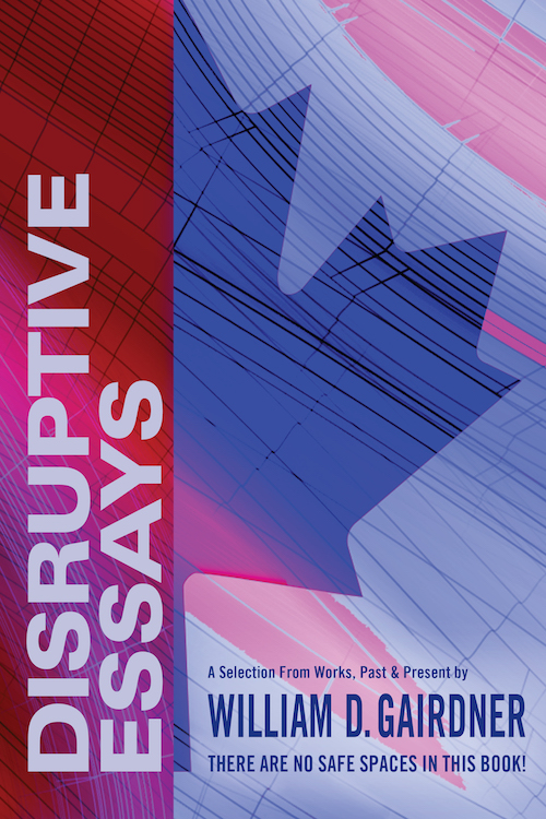 Disruptive Essays book cover